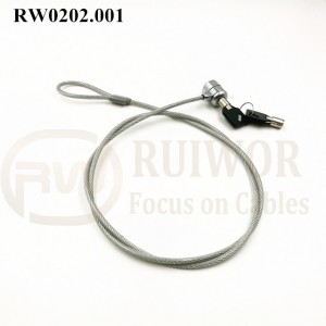 Good Quality Locking Retractable Key Chain - RW0202.001 unique & one-to-one correspondence Metal key Laptop anti theft cable lock – Ruiwor